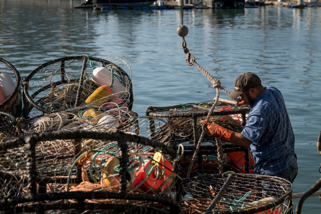 As Warming Oceans Bring Tough Times to California Crab Fishers, Scientists Say Diversifying is Key to Survival